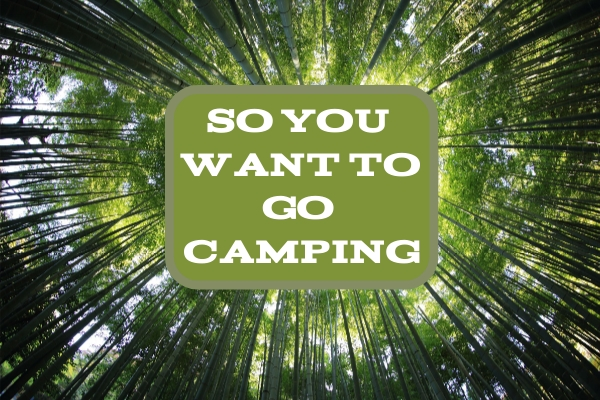 So You Want To Go Camping